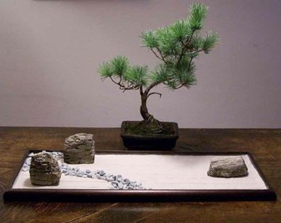 Giardini zen in miniatura bonseki giardino da tavolo - Giardino zen in miniatura ...
