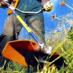manutenzione di giardini milano