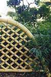 bamboo-giardino