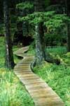 giardino-legno