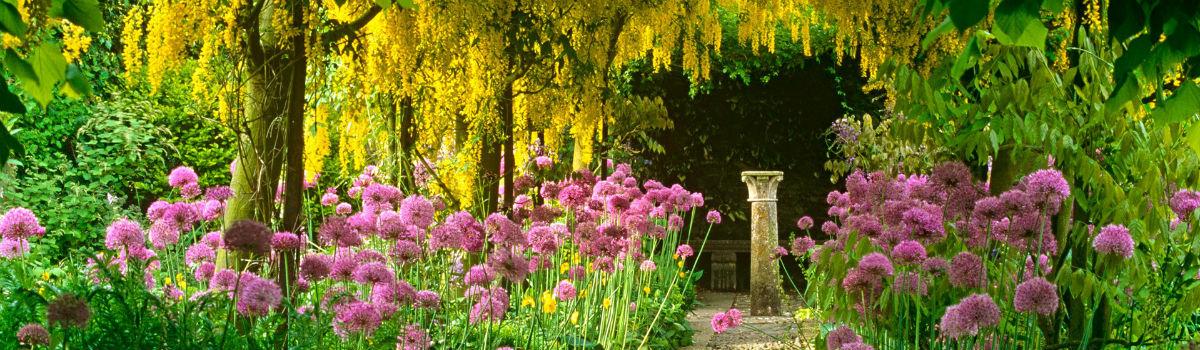 Giardinieri a milano realizzazione e manutenzione giardini for Manutenzione giardini